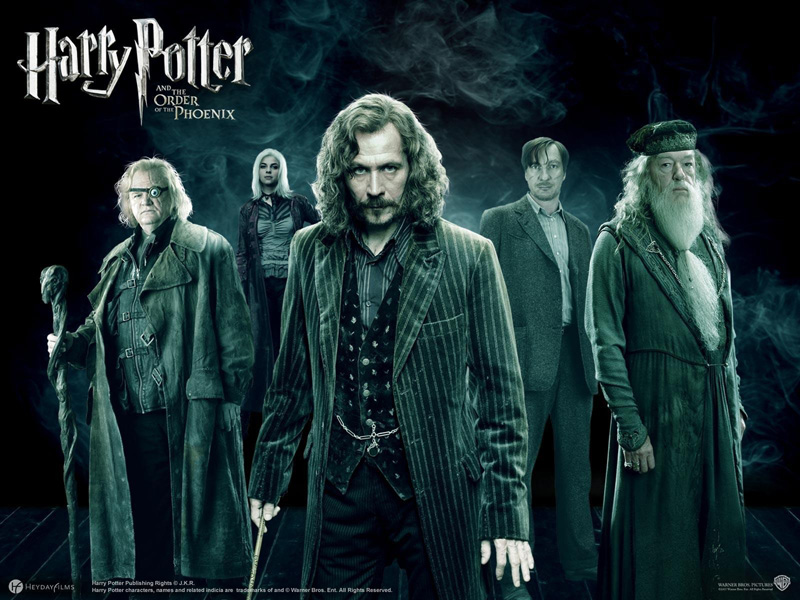 Harry-potter-the-order-phoenix-sirius-black-6842