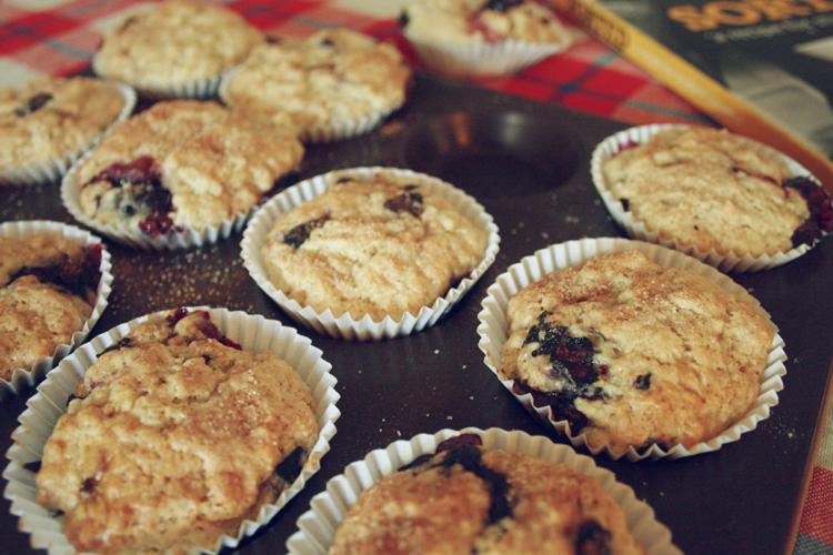 19th muffins08